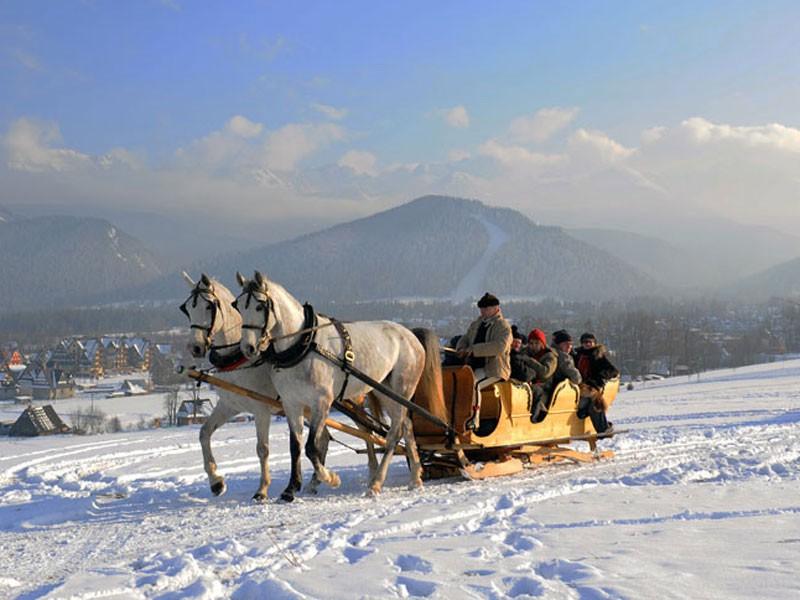 http://www.atrakcje.regiontatry.pl/images/photo/kulig-zakopane-tarant.jpg